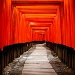 photodune-409201-japan-gate-torii-m