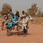 Family riding to a nearby market, near Toubacouta, Senegal