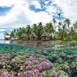 Rustic thatch covered bungalows sit at the edge of a shallow reef on motu Tetumanu - at the edge of Tomakohua PAss Fakarava Tuomotus French Polynesia Pacific Ocean