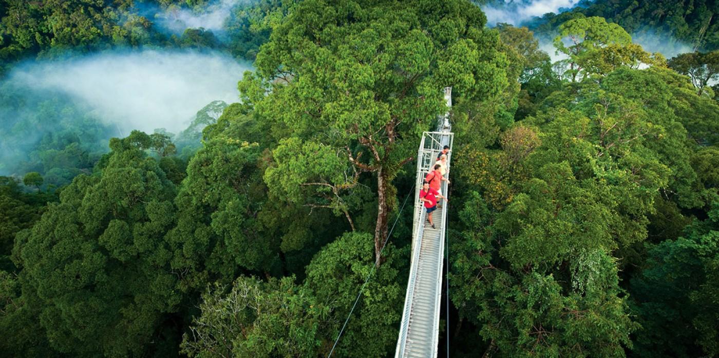 lugares-costa-rica-para-visitar-monteverde